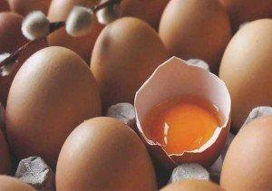 congelamento e descongelamento de ovo