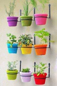As melhores ervas para cultivar em casa