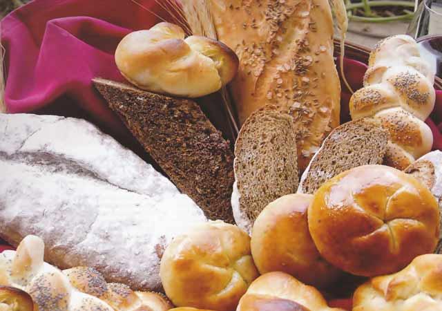 congelamento e descongelamento de pães